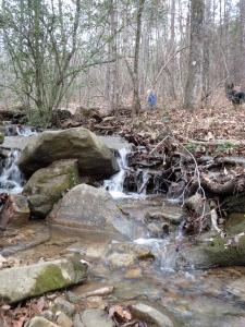 Up the stream. Gabe up ahead. Photo - Jen